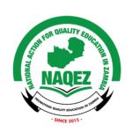 NAQEZ logo